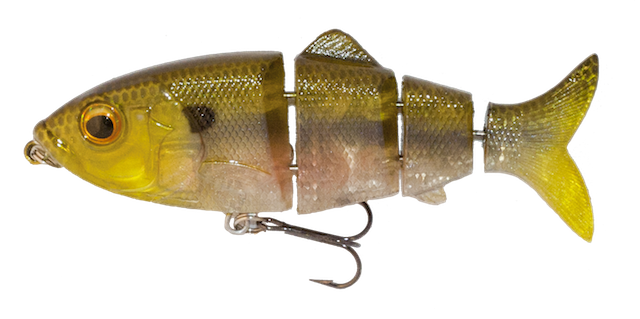 ghost-minnow.png