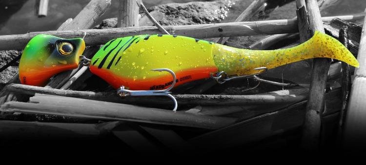 shad22-fishing_1400x.progressive.jpg